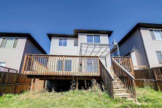 Photo 33: 89 SADDLELAND Close in Calgary: Saddle Ridge Detached for sale : MLS®# A1149993