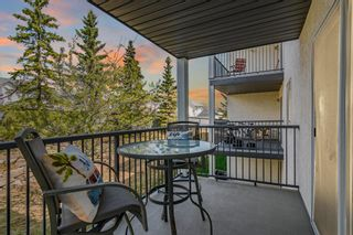 Photo 28: 206 55 Arbour Grove Close NW in Calgary: Arbour Lake Apartment for sale : MLS®# A1107182