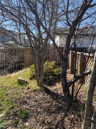 Photo 29: 191 Taravista Street NE in Calgary: Taradale Detached for sale : MLS®# A1095262