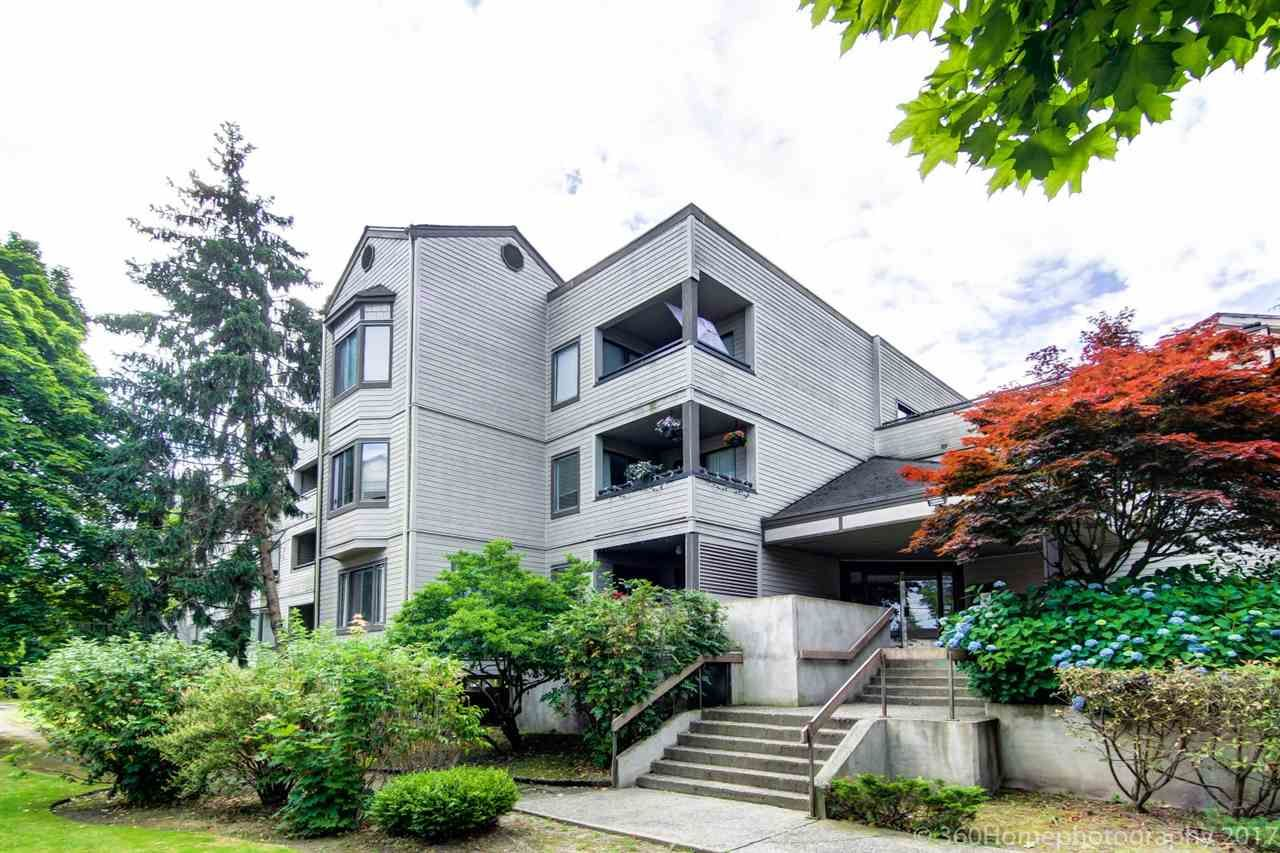 Main Photo: 104 5224 204 STREET in : Langley City Condo for sale : MLS®# R2185210