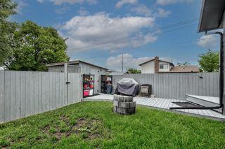 Photo 48: 5 Templeton Bay NE in Calgary: Temple Semi Detached for sale : MLS®# A1113362