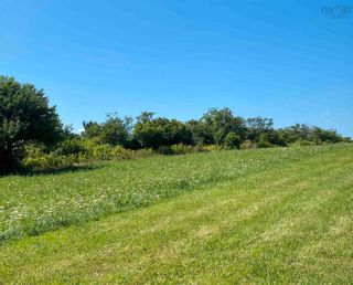Photo 12: 11.6 acres East Tracadie Road in East Tracadie: 301-Antigonish Vacant Land for sale (Highland Region)  : MLS®# 202122282