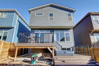 Photo 46: 53 SAGE BLUFF View NW in Calgary: Sage Hill Detached for sale : MLS®# C4296011