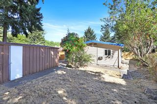 Photo 6: 2178 E 4th St in : CV Courtenay East House for sale (Comox Valley)  : MLS®# 883514