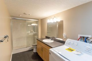 Photo 29: 66 Evansbrooke Terrace NW in Calgary: Evanston Detached for sale : MLS®# A1085797