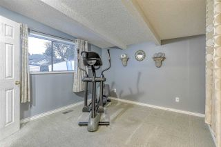 Photo 14: 10217 MICHEL Place in Surrey: Whalley House for sale (North Surrey)  : MLS®# R2438817