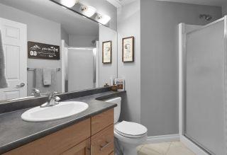Photo 20: 209 9811 96A Street in Edmonton: Zone 18 Condo for sale : MLS®# E4230434