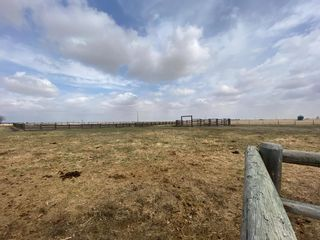 Photo 45: 578010 168 Street: Rural Foothills County Detached for sale : MLS®# A1099226