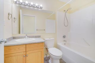 Photo 34: 8616 6 Avenue in Edmonton: Zone 53 House for sale : MLS®# E4264781