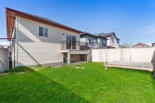 Photo 35: 13 TARALAKE Heath NE in Calgary: Taradale Detached for sale : MLS®# A1112672