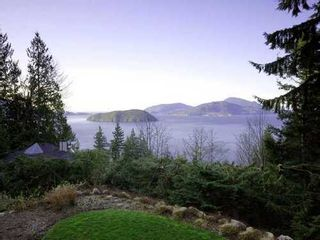 Photo 10: 190 MOUNTAIN Drive in West Vancouver: Home for sale : MLS®# V903436