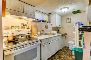 Photo 19: 20 Castleridge Close NE in Calgary: Castleridge Detached for sale : MLS®# A1113165
