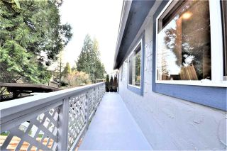 Photo 31: 3662 EVERGREEN Street in Port Coquitlam: Lincoln Park PQ House for sale : MLS®# R2534123