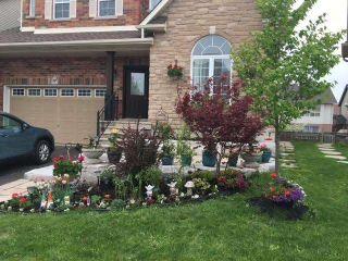 Photo 40: 12 Mcmaster Road: Orangeville House (2-Storey) for sale : MLS®# W5126987