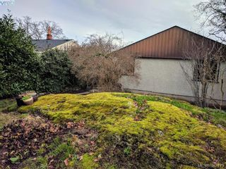 Photo 17: 2528 Forbes St in VICTORIA: Vi Oaklands House for sale (Victoria)  : MLS®# 777981
