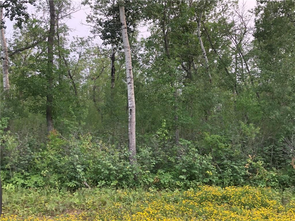 Main Photo: 10 Northwinds Road in Alonsa: Lake Manitoba Narrows Residential for sale (R19)  : MLS®# 202119780