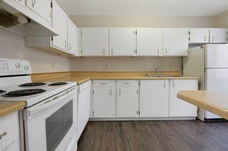 Photo 17: 4314 38 Street in Edmonton: Zone 29 House for sale : MLS®# E4225194