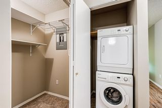 Photo 16: 103 11 Dover Point SE in Calgary: Dover Apartment for sale : MLS®# A1144552
