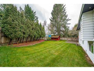 Photo 39: 11118 84B AVENUE in Delta: Nordel House for sale (N. Delta)  : MLS®# R2541278