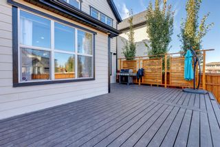 Photo 42: 16 Marquis Grove SE in Calgary: Mahogany Detached for sale : MLS®# A1152905