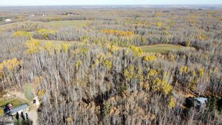 Photo 8: 15 54023 RGE RD 280: Rural Parkland County Rural Land/Vacant Lot for sale : MLS®# E4266505