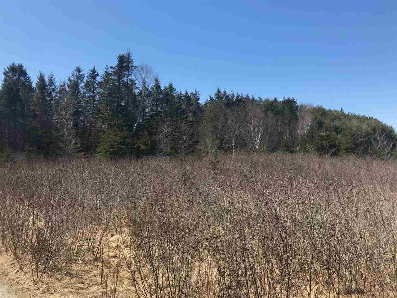 Photo 1: Photos: 11574 Highway 7 in Lake Charlotte: 35-Halifax County East Vacant Land for sale (Halifax-Dartmouth)  : MLS®# 201927372