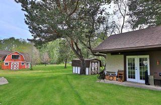 Photo 13: 5712 45 Avenue: Wetaskiwin House for sale : MLS®# E4247203