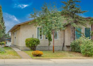 Photo 33: 228 Berwick Drive NW in Calgary: Beddington Heights Semi Detached for sale : MLS®# A1137889