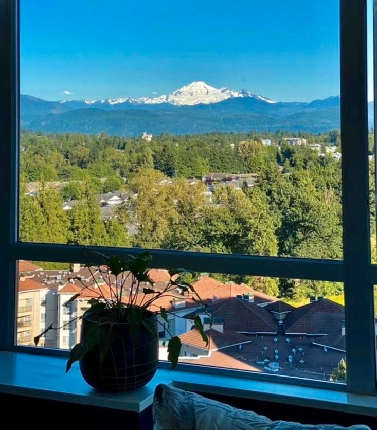 """Photo 39: Photos: 1402 3190 GLADWIN Road in Abbotsford: Central Abbotsford Condo for sale in """"Regency Park"""" : MLS®# R2589497"""