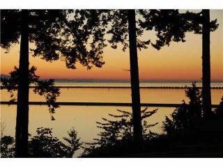 Main Photo: 731 ENGLISH BLUFF Road in Tsawwassen: English Bluff Land for sale : MLS®# V1106481