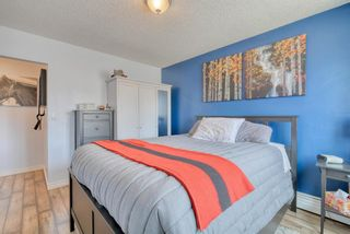 Photo 26: 306 315 Heritage Drive SE in Calgary: Acadia Apartment for sale : MLS®# A1090556