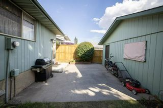 Photo 37: 2719 41A Avenue SE in Calgary: Dover Detached for sale : MLS®# A1132973
