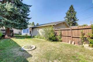 Photo 30: 2618 46 Street SE in Calgary: Forest Lawn Detached for sale : MLS®# A1146875