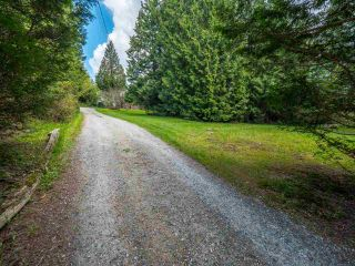 Photo 19: 3204 HUCKLEBERRY Road: Roberts Creek House for sale (Sunshine Coast)  : MLS®# R2364064