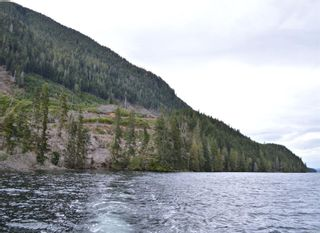 Photo 7: LT 1 Neroutsos Inlet in : NI Port Hardy Land for sale (North Island)  : MLS®# 859845