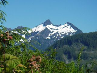 Photo 12: Lot 1 Tootouch Pl in TAHSIS: NI Tahsis/Zeballos Land for sale (North Island)  : MLS®# 844598