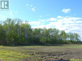 Photo 1: 000 1084 in High Level: Vacant Land for sale : MLS®# A1113519