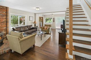 Photo 6: 706 Lindsay St in VICTORIA: SW Royal Oak House for sale (Saanich West)  : MLS®# 788621