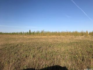 Photo 11: Greenfield Section RM 158 in Edenwold: Farm for sale (Edenwold Rm No. 158)  : MLS®# SK848878