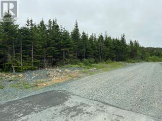 Photo 2: 45-61 Robin's Pond Hill Road in Torbay: Vacant Land for sale : MLS®# 1232583