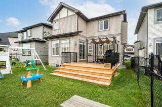 Photo 29: 60 Skyview Shores Gardens NE in Calgary: Skyview Ranch Detached for sale : MLS®# A1132367