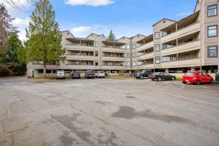 """Photo 4: 205 5224 204 Street in Langley: Langley City Condo for sale in """"South Wynde Court"""" : MLS®# R2560641"""
