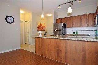 Photo 3: 426 12350 Harris Road in Pitt Meadows: Condo for sale : MLS®# R2097283