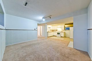 Photo 28: 4728 Rundlehorn Drive NE in Calgary: Rundle Detached for sale : MLS®# A1051594