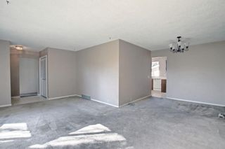 Photo 10: 132 Mardale Crescent NE in Calgary: Marlborough Detached for sale : MLS®# A1146772