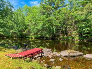 Photo 24: 66 Basil Whynot Road in Upper Northfield: 405-Lunenburg County Residential for sale (South Shore)  : MLS®# 202118031