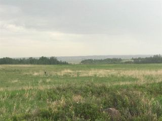 Photo 13: TWP 580 Rg Rd 240 Sturgeon County: Rural Sturgeon County Rural Land/Vacant Lot for sale : MLS®# E4248027