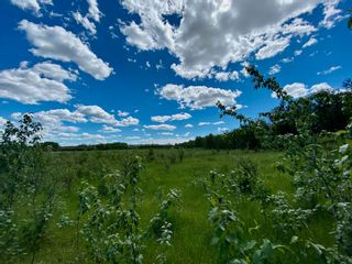 Photo 2: RR 132 TWP 600: Rural Smoky Lake County Land Commercial for sale : MLS®# E4250832