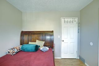 Photo 18: 217 Templemont Drive NE in Calgary: Temple Semi Detached for sale : MLS®# A1120693