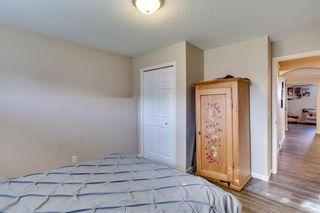 Photo 38: 26 Saddlemont Way NE in Calgary: Saddle Ridge Detached for sale : MLS®# A1103479